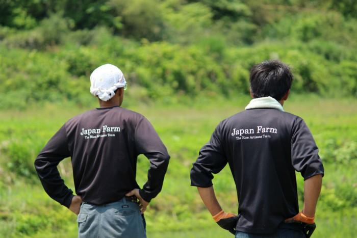 田植えを終えた米職人たち