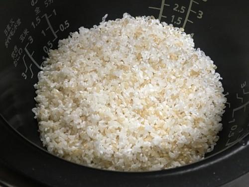玄米a190528