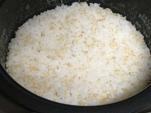玄米c190528